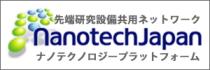 ナノテクノロジープラットフォーム